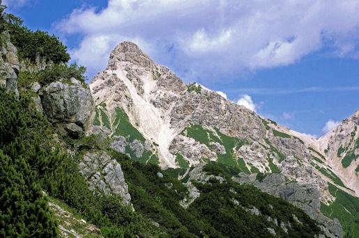 11 Cima e Forcella Spe dall'errata Valle dei Lares